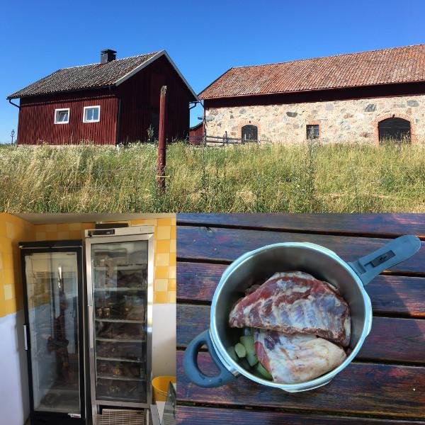 Tryckkokat vildsvin från Båltsnäs Gård